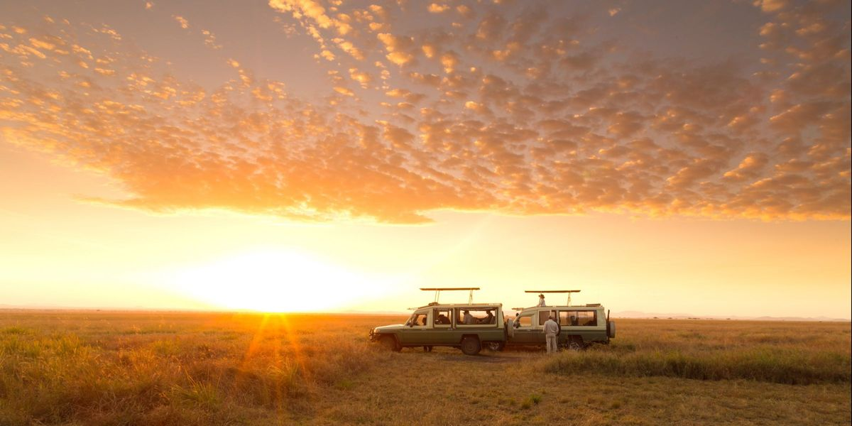 Serengeti Safari Camp - Drive