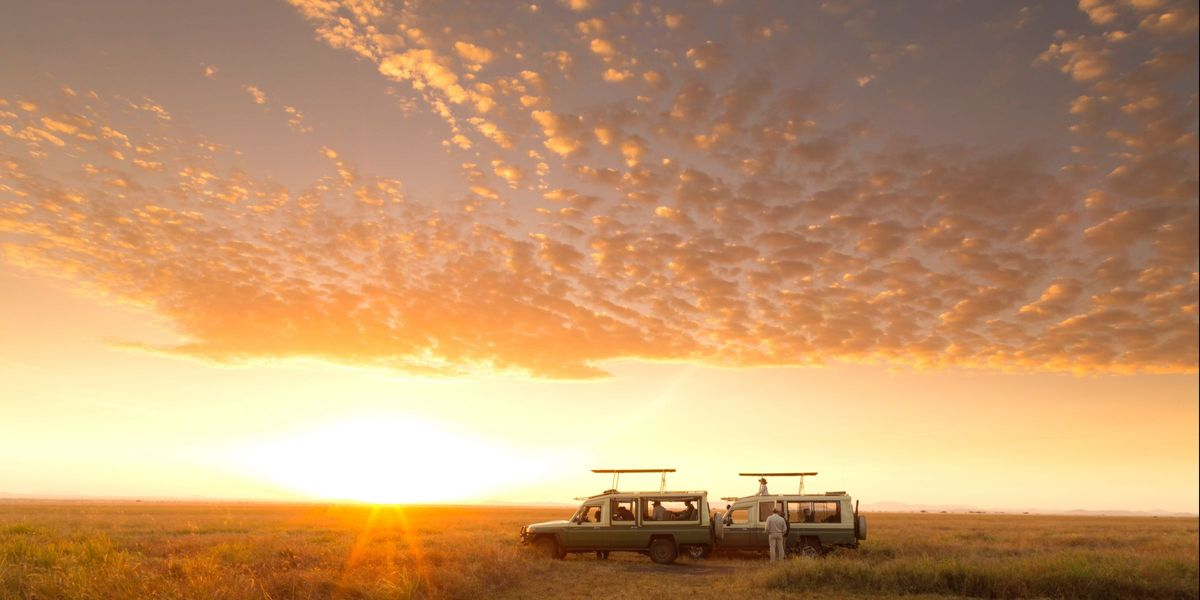 Serengeti Safari Camp South - Drive